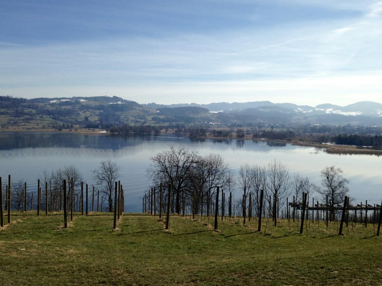 Foto Aussicht Jucker Farm