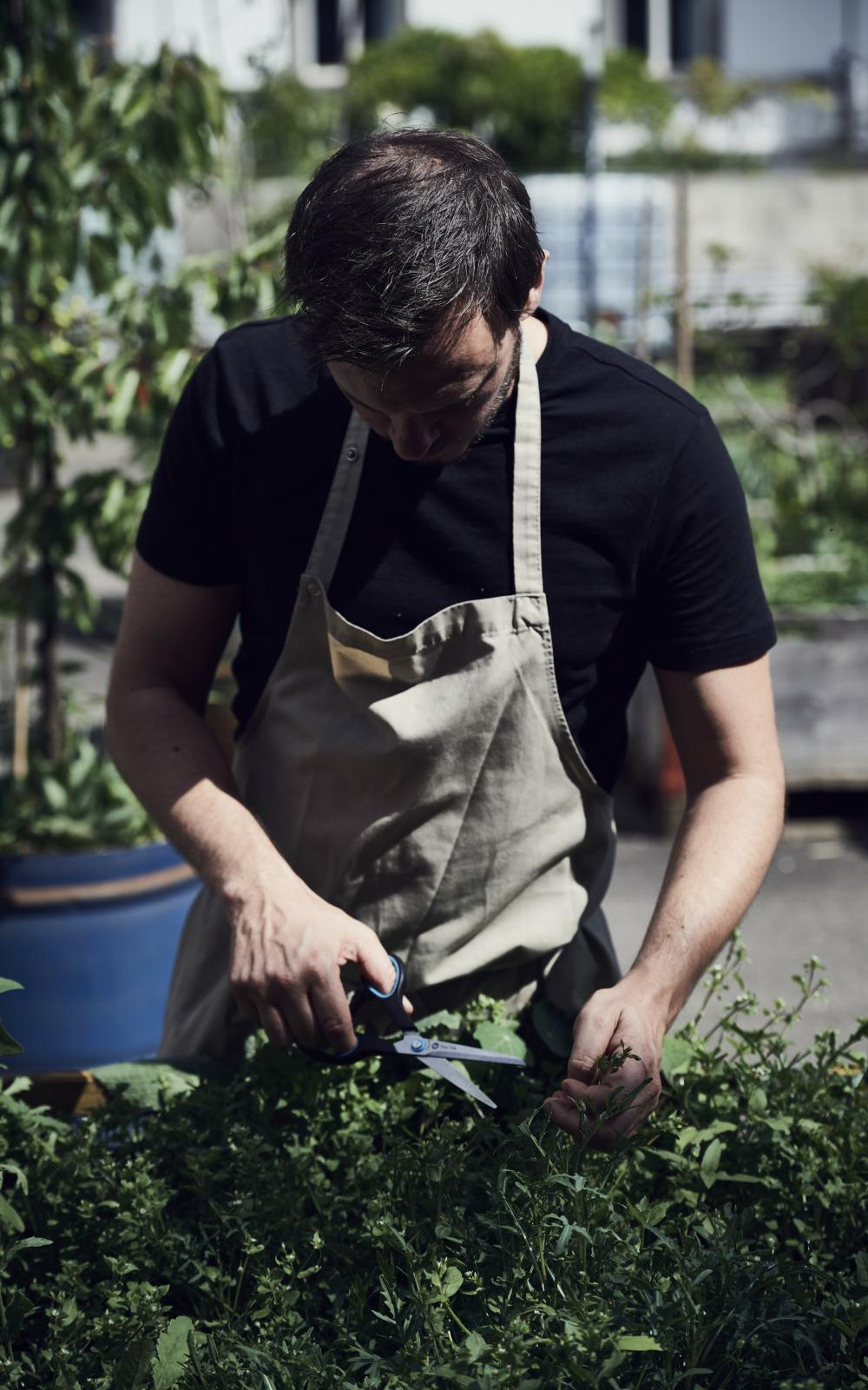 Mark Thommen im Garten