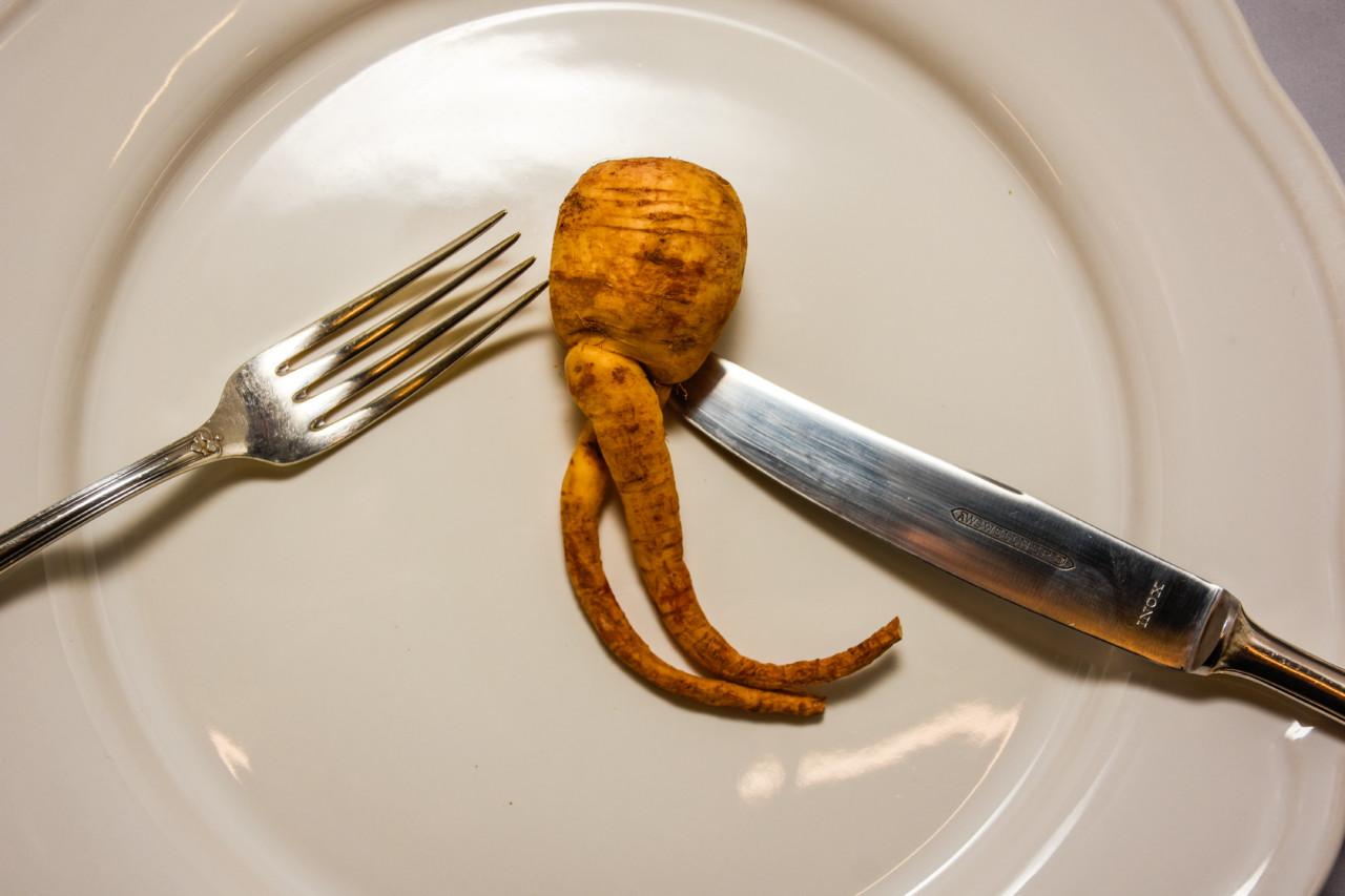 Auch eine schon etwas schrumpelige Pastinake findet bei dem Catering Zum guten Heinrich auf den Teller. Foto: FOOD ZURICH