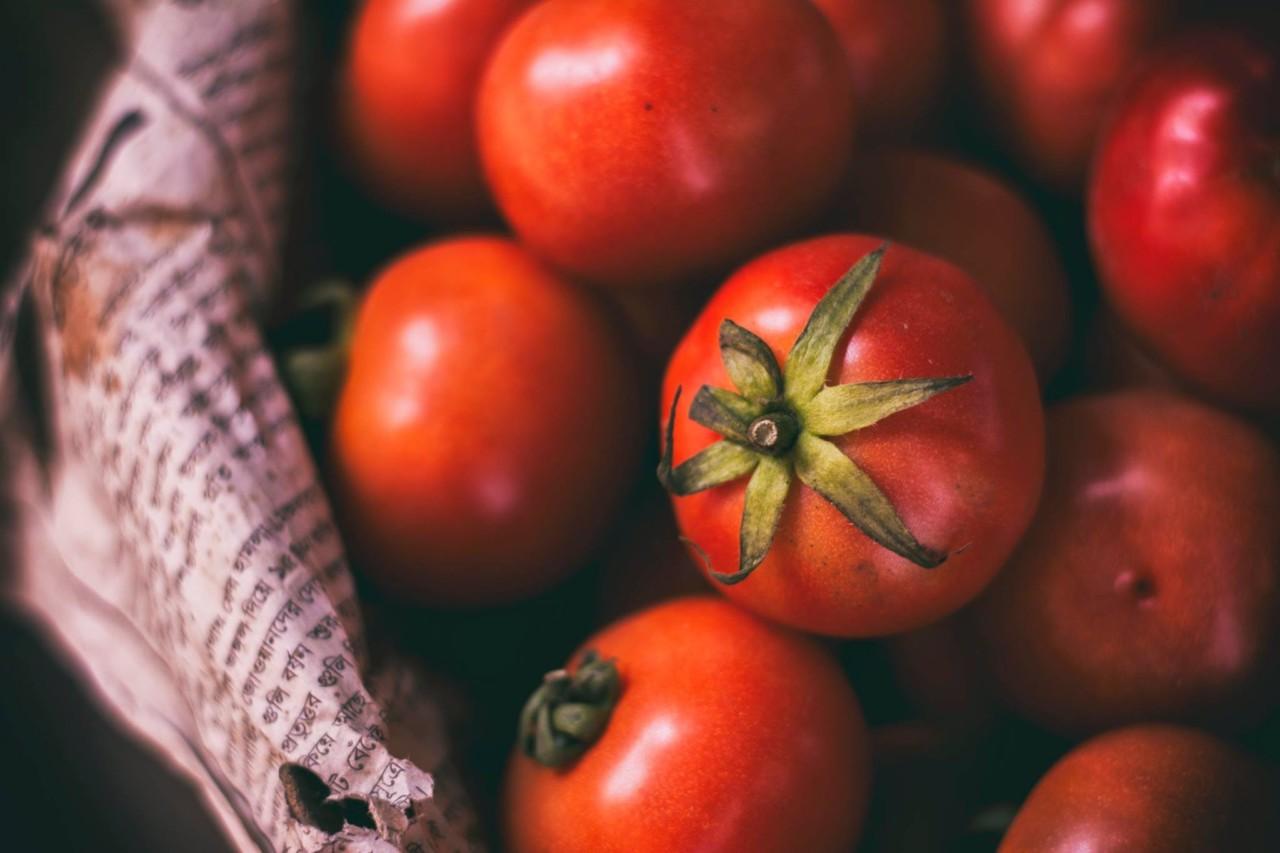 Originelle Salate als Grillbeilage