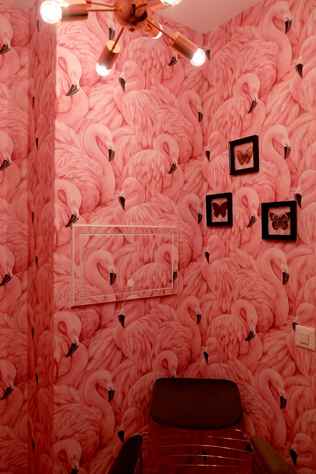 So viele Flamingos gibts nicht mal im Zoo: Sasu Saftbar. Foto: Lunchgate/Anna