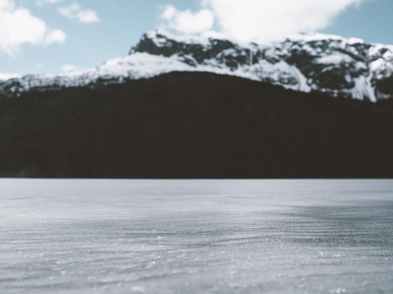 Wenn der Boden gefroren ist, wird die Nahrungssuche zur Herausforderung. Foto: unsplash