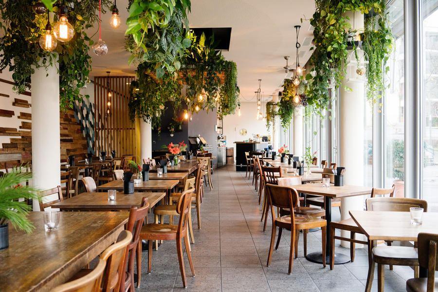 Auch die von der Decke herab wachsenden Pflanzen werden einmal auf dem Teller der Gäste landen. Foto: gaultmillau.ch