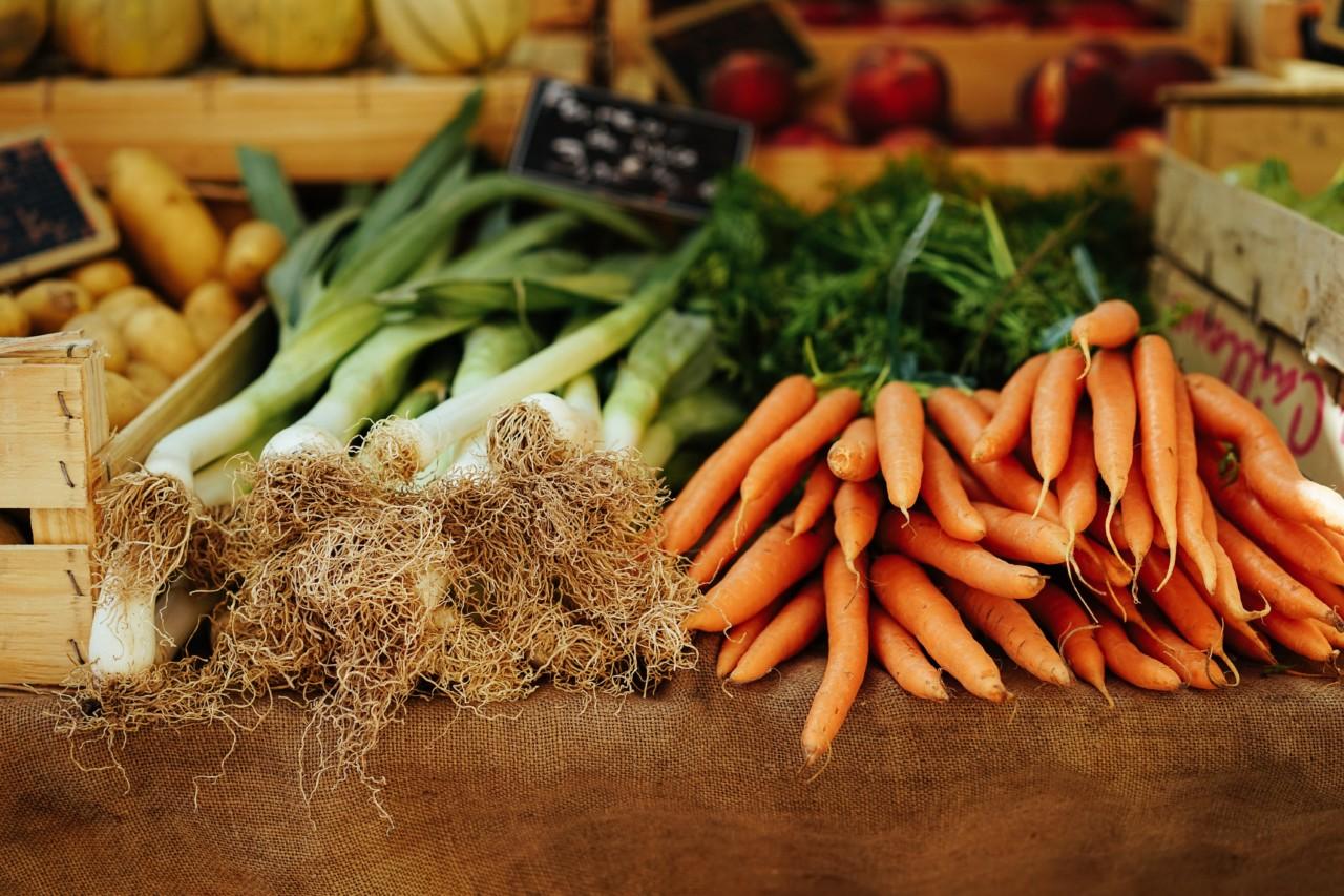 naturverbunden-kochen-kochkurs-migros-klubschule-markt