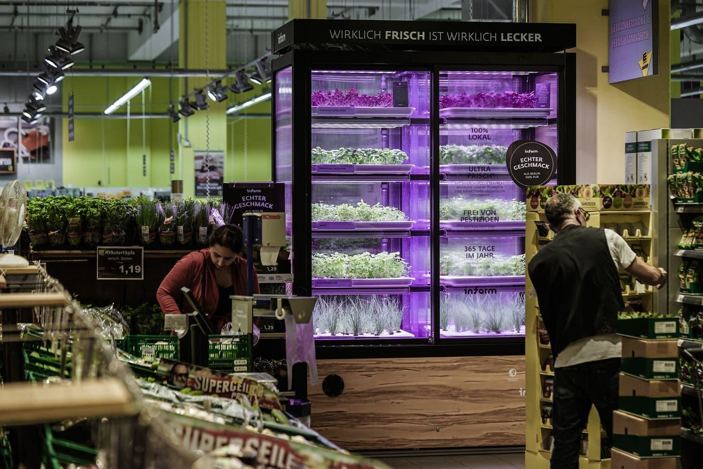 Sieht auch ziemlich futuristisch aus: Eine Mini-Kräuterfarm im deutschen Supermarkt Edeka. Foto: zvg